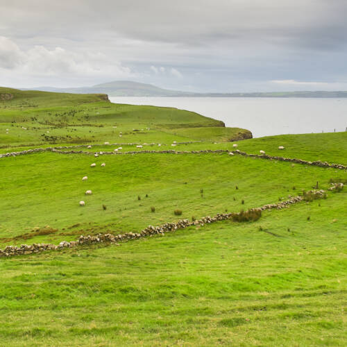 Irlandia Północna